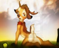 bambi-png
