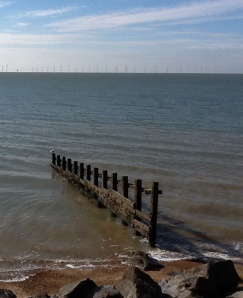 The Crucifices of Canute